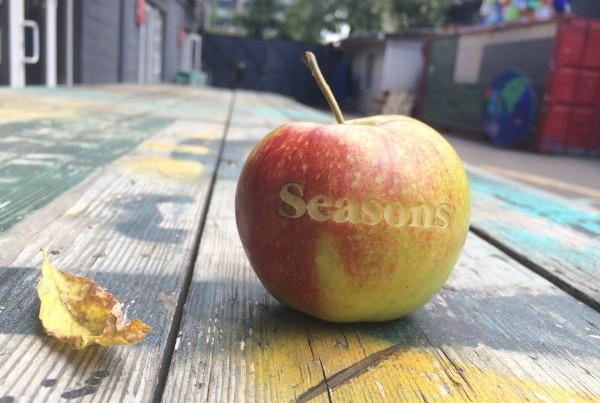 гравировка на яблоке. Seasons. made by Make